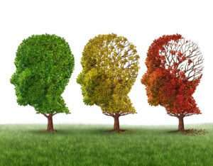 Memory loss, Dementia and Alzheimer's